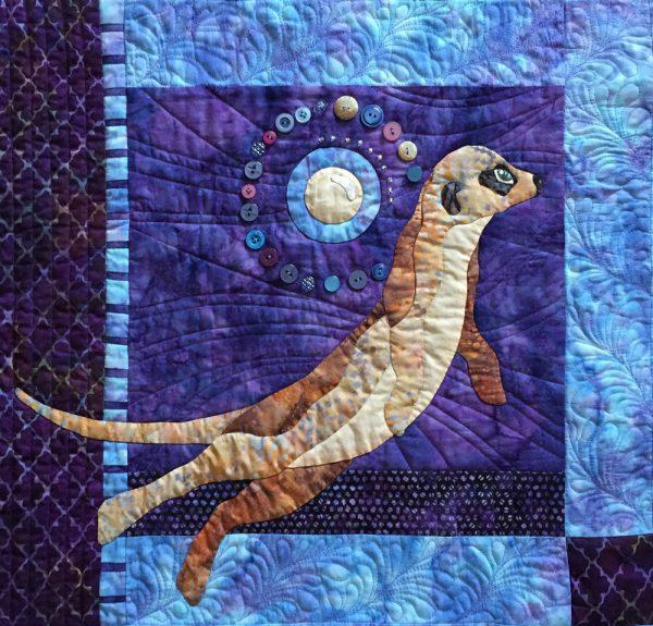 moon-over-meerkat-2